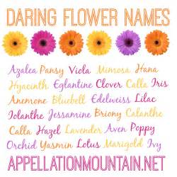 Words That Rhyme With Lotus Azalea And Edelweiss Daring Flower Names Appellation