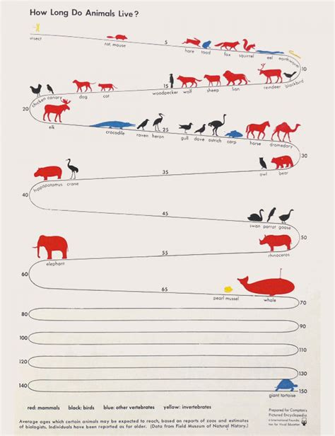 how many years does a live how do animals live visual ly