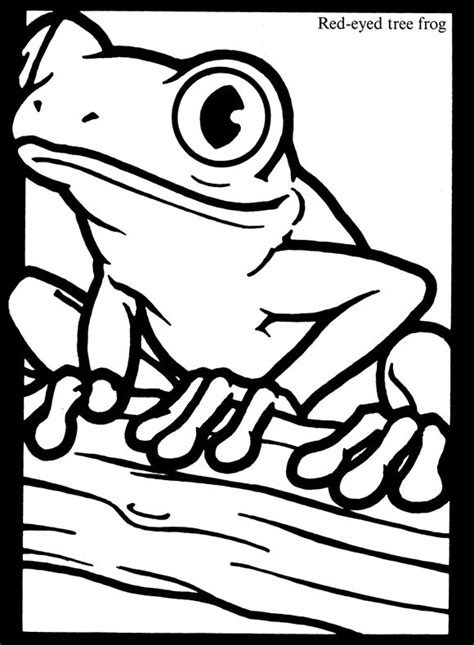 Free Red Eyes Tree Frog Coloring Page Educational Eyed Tree Frog Coloring Page