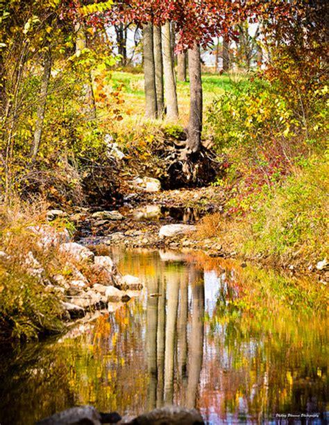 arkansas fall colors fall colors in arkansas flickr photo