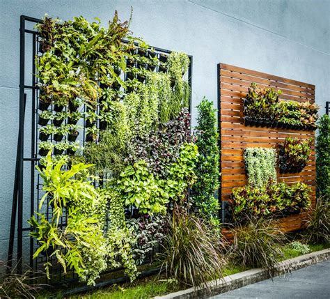 vertical gardens are the key to self sufficiency in the city