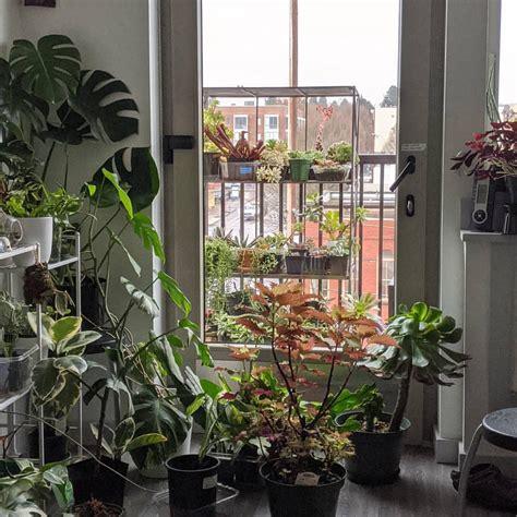 indoor garden   place