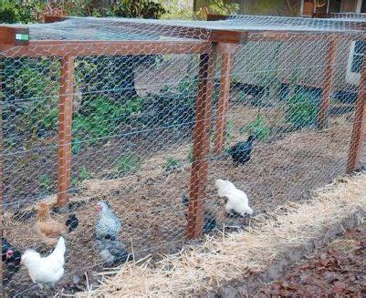 Backyard Chicken Laws Outdoor Goods Backyard Chicken Laws