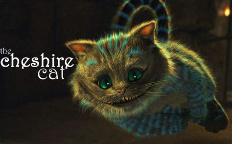 cheshire cat my top collection cheshire cat wallpaper