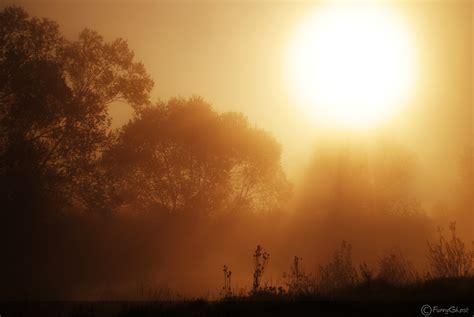 in the morning morning peacelovepaleo
