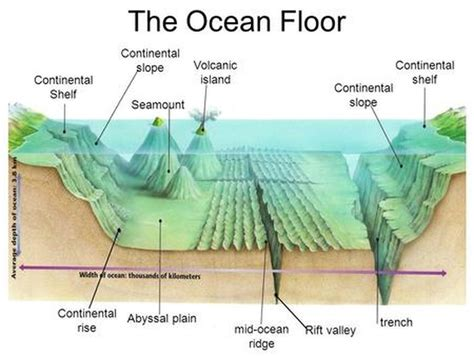 Depth Of Continental Shelf by 8th Plans Ms Cole S Page