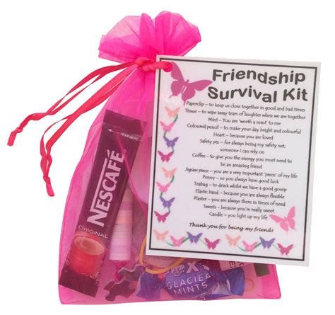 Great Gift Ideas The Best Kits Of The Season by Friendship Bff Best Friend Survival Kit Gift Unique