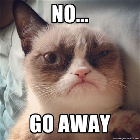 Angry Cat No Meme - 1444 best images about tardar sauce grumpy cat on