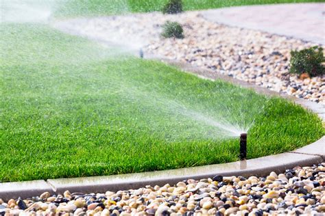 3 essential watering and irrigation tips for tallahassee
