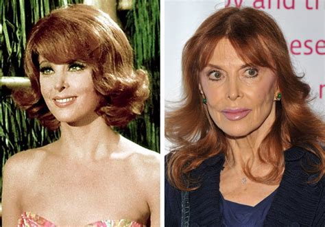 most famous actresses today older actresses who are still gorgeous today dailydisclosure