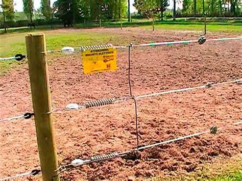 recinzioni per animali da cortile recinzioni elettrificate emporio della natura
