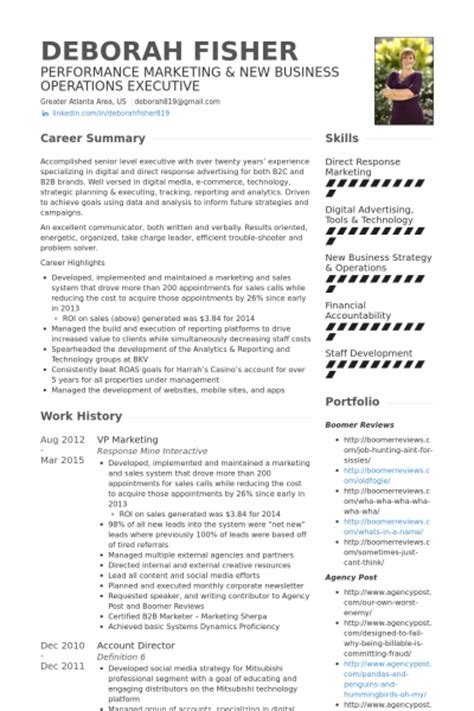 vp of marketing resume vp of marketing resume resume ideas