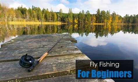 a beginner s guide to fly fishing tips for anglers just