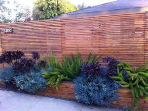 best plants for front yard front yard plants front yard