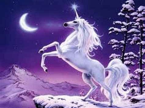 see what you would look like with different color hair what do unicorns look like unicorn