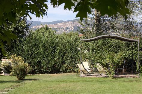 giardini con ulivi tuscan farm photos pictures and images of