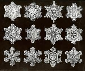 Bentley Snow Crystals 102 Best Images About Snowflakes An Electron
