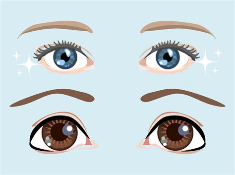 eye vectors eps png jpg svg format