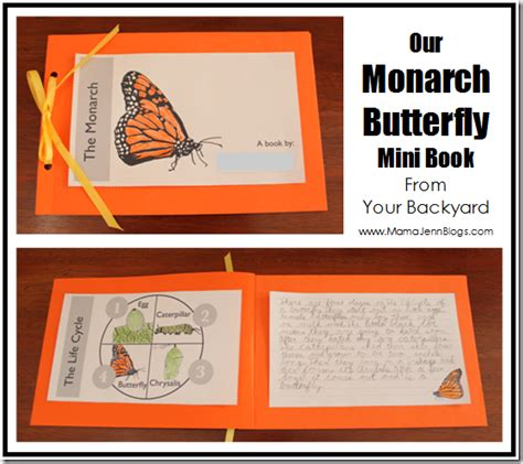 our miracle monarchs books your backyard monarch butterfly dvd study guide