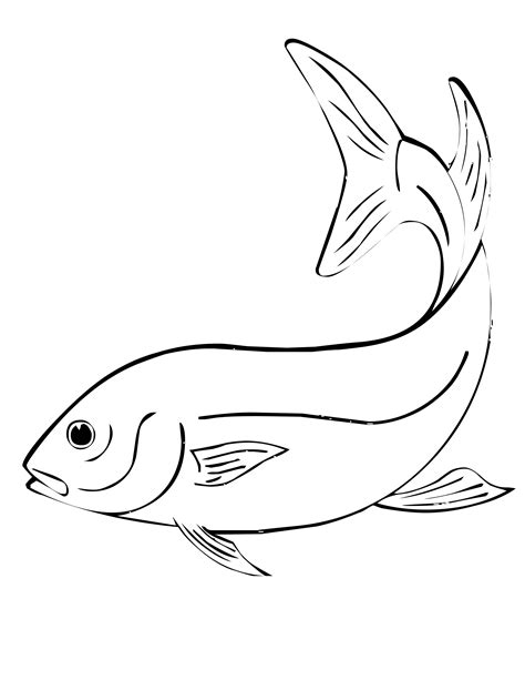 coloring pages on fish pictures of fish for colouring kids coloring europe