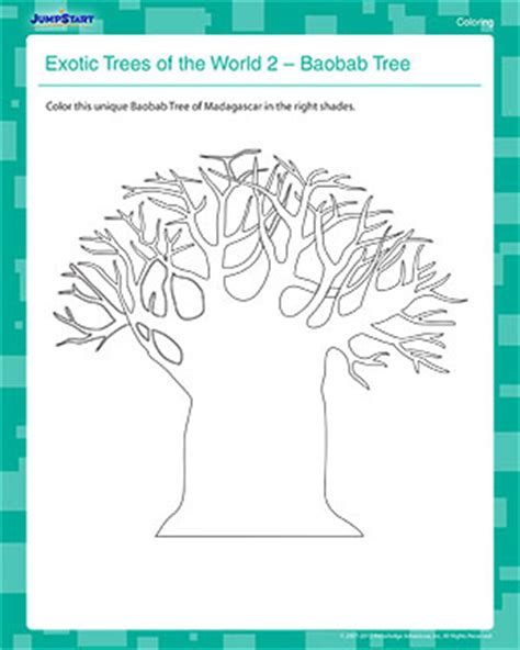 baobab tree coloring page exotic trees of the world 2 free coloring worksheet