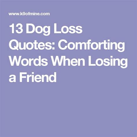 how to comfort someone who lost a friend 13 dog loss quotes comforting words when losing a friend