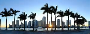 New York Wall Mural argus opens miami office to serve florida and latin