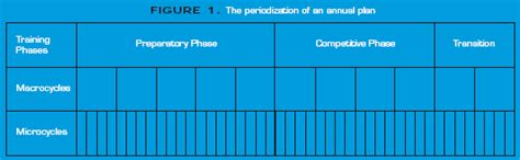 Periodization And The Annual Training Plan Part One