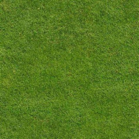 Best Blue Paint by Green Grass Texture Seamless 12991