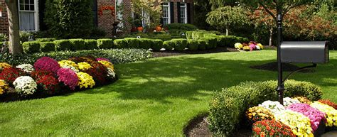 low maintenance landscaping zone 6 professional landscaping cheyenne wy residential landscape