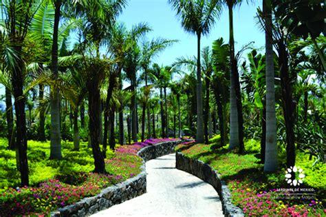 imagenes de jardines botanicos en mexico fernando de la mora en la apertura de los jardines de