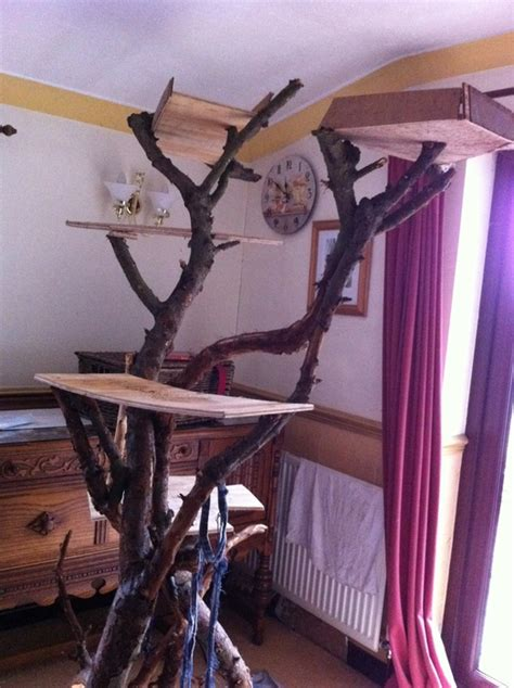 how to make a cat tree 183 cats 183 swinny net