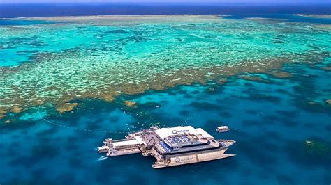 catamaran cruise great barrier reef 4d3n cairns aviigo
