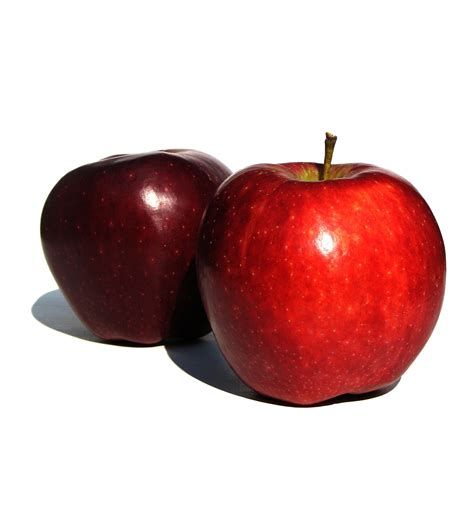 apple to apple top 5 reasons to eat apples enlightened eater