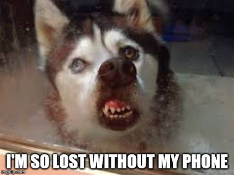 I Lost My Phone Meme - y u no meme imgflip