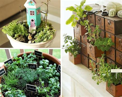 Creative Indoor Herb Garden Ideas Creative S Day Ideas Sustainable Crafts For Your