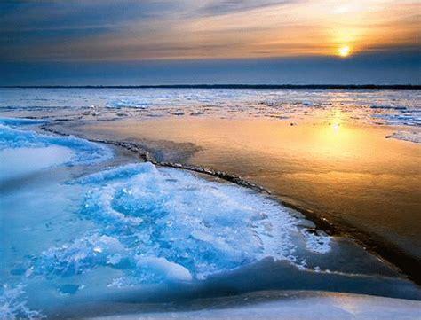 imagenes en movimiento del mar en el mar de cajal y golgi