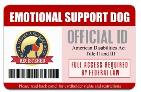 Service Animal Id Cards Service Dog Vest And Id Card Kits Service Dog Vests And Id Cards Emotional Support Id Template