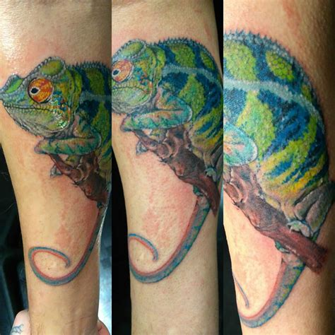 chameleon tattoo pin chameleon on