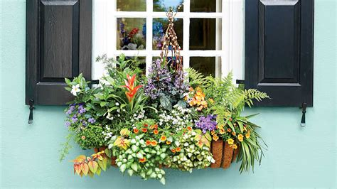 house beautiful magazine customer service add charm with window boxes southern living