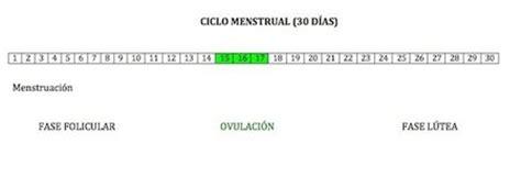 Calendario Hormonal Semana 2 De Embarazo