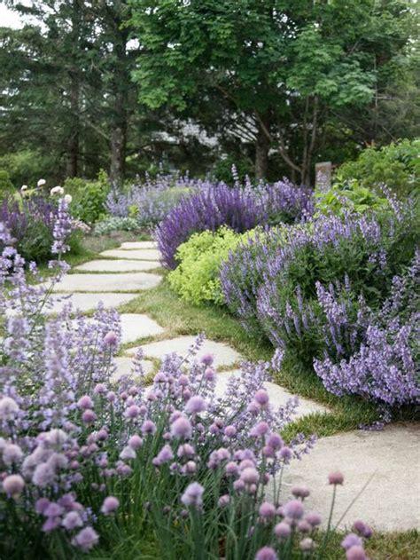 Landscape Lavender Home Design Ideas Pictures Remodel Lavender Garden Ideas