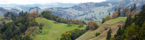 Sonoma County Search Hospice Santa Rosa Sonoma County Hospice By The Bay