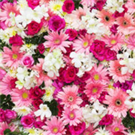fascio di fiori immagini un bel mazzo di fiori freschi da regalare flority fair