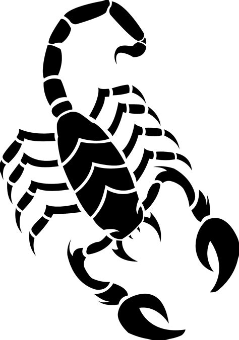 scorpion clipart scorpion clipart silhouette pencil and in color scorpion