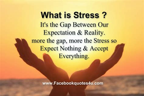 stress management slogans quotations segerioscom