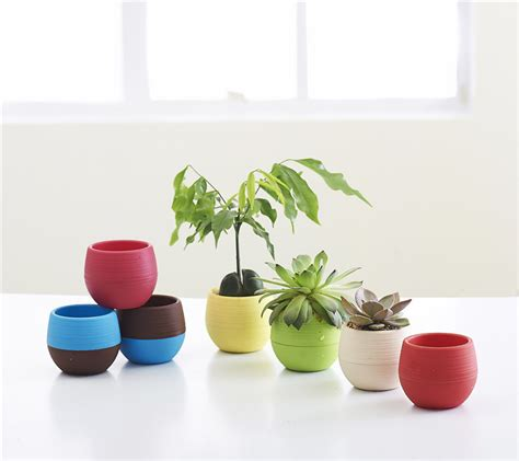 office pots gardening mini plastic flower pots nursery pots home