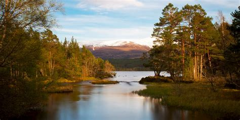 Holiday Cottages in Cairngorms National Park, Scotland   Book online