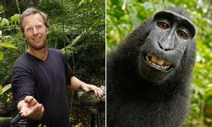 Peta Sues Photographer David Slater To Try And Get A | peta sues photographer david slater to try and get a