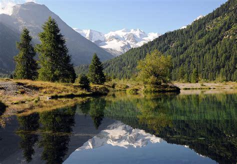 pur natur natur pur forum f 252 r naturfotografen